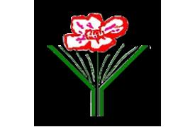 Приглашаем на XXIX Симпозиум по реологии и II Школу молодых ученых «Реология и переработка полимеров»