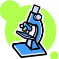 Направление микробиологических исследований