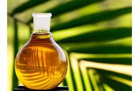 Пальмовое масло - мифы и реальность.