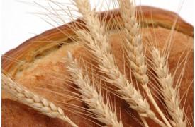 Правильно ли отказываться от хлеба желающим похудеть?