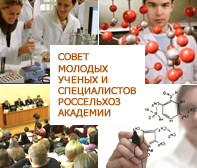 Совет молодых ученых и специалистов